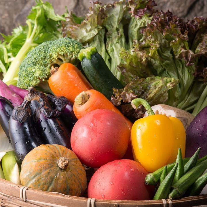 産地直送の新鮮野菜。