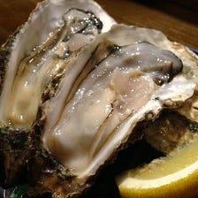 産地食べ比べができる!殻付き牡蠣