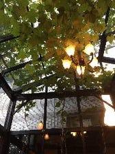 甲州ブドウのグリーンカーテン