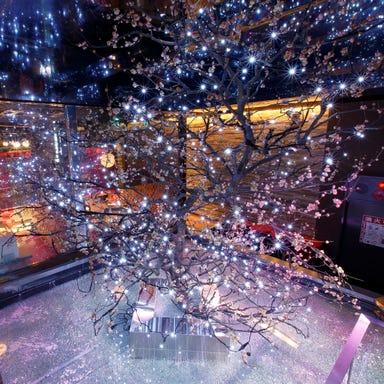 個室ダイニング ウメ子の家 新宿東口店 店内の画像