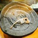 《店名の由来は…》 この「鯛の鯛」という骨!縁起物です◎