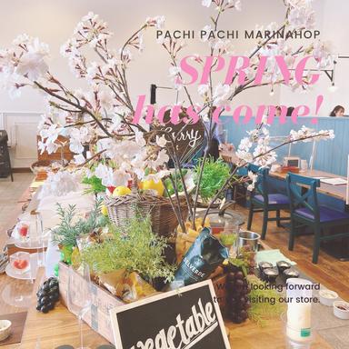 SEASIDE&STYLE Pachi Pachi -パチパチ- こだわりの画像