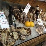 各地から集まるカキ・牡蠣!
