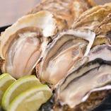 ランチから生牡蠣食べられる!