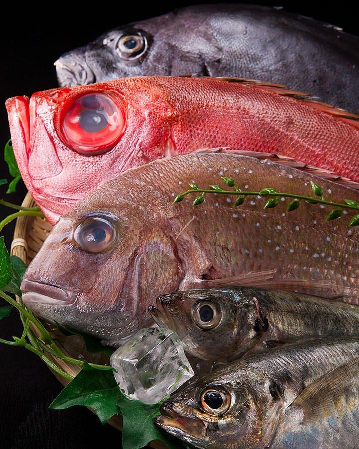 鮮魚にもこだわりあり!