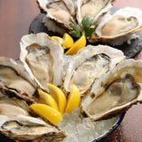 おすすめ!「本日入荷の生牡蠣と岩牡蠣」を食べ比べでお楽しみいただける「真牡蠣と岩牡蠣4種類2P 盛り合わせ」。