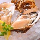 とろけるような濃厚な味わい、さっぱりとフレッシュなおいしさ…、産地ごとに異なる個性溢れる生牡蠣を日本酒や白ワインとともにどうぞ。