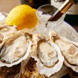その時期最もおいしい産地から仕入れる生牡蠣。国内産の厳選牡蠣を常時8~10種類ご用意しています。