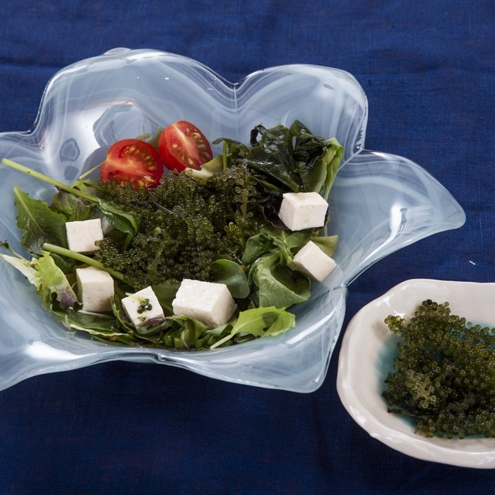 沖縄直送の素材を生かしたお料理です。