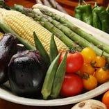 鮮度抜群の新鮮なお野菜が充実。
