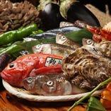 四季折々の旬の海鮮が豊富