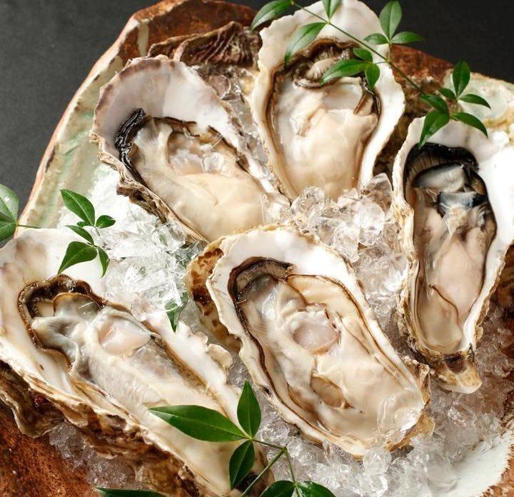 厚岸産殻付牡蠣