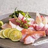 【厳選食材】日替わり鮮魚の盛り合わせ【兵庫県】