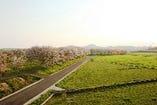四季折々の風景をお楽しみ頂けます。