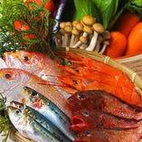 毎日市場で仕入れる魚介類・野菜・肉等【岡山県】