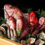 新鮮な旬魚を贅沢に使用した、刺身や天ぷら等、季節を感じる日本料理をぜひ