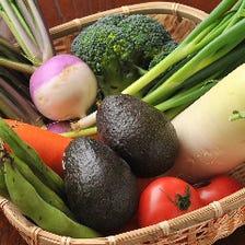 旬を楽しむ朝採れ新鮮野菜