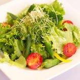 彩り野菜のイタリアンサラダ