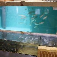 店内に構えた巨大な生簀で泳ぐ鮮魚