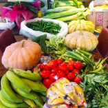 ケララバワンのインド野菜たち