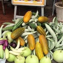 自家栽培のインド野菜使用♪