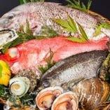豊洲直送の鮮魚を活づくり。新鮮さが自慢です。