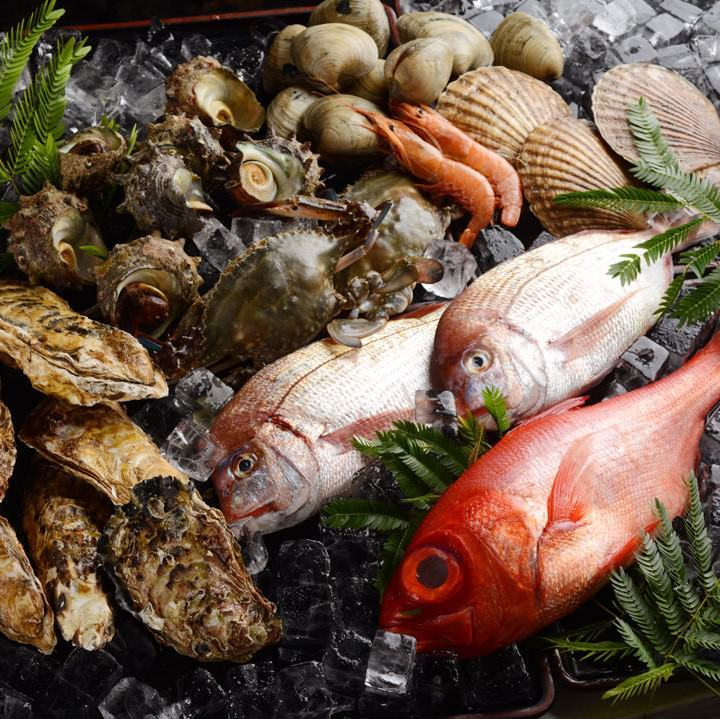 毎日仕入れたとびきりの魚介を提供!