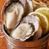 国産の真牡蠣が5、6個入って990円(税抜)!