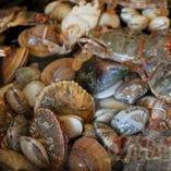 毎日市場で新鮮の魚貝類、野菜を買い付け【東京都】