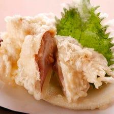 茨城県鹿島沖産肉厚大地蛤(じはまぐり)《当店自慢》