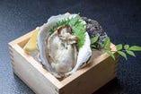 真牡蠣1個