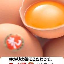 ヨード卵使用