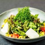 九条葱の豆腐サラダ