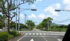 気持ちの良い並木道交差点を直進。