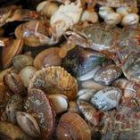 毎日専門のチーフ市場で新鮮の魚貝類、野菜を買い付け【東京都】