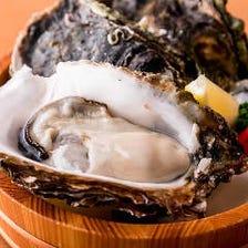 夏は岩牡蠣、冬場は真牡蠣をご用意!