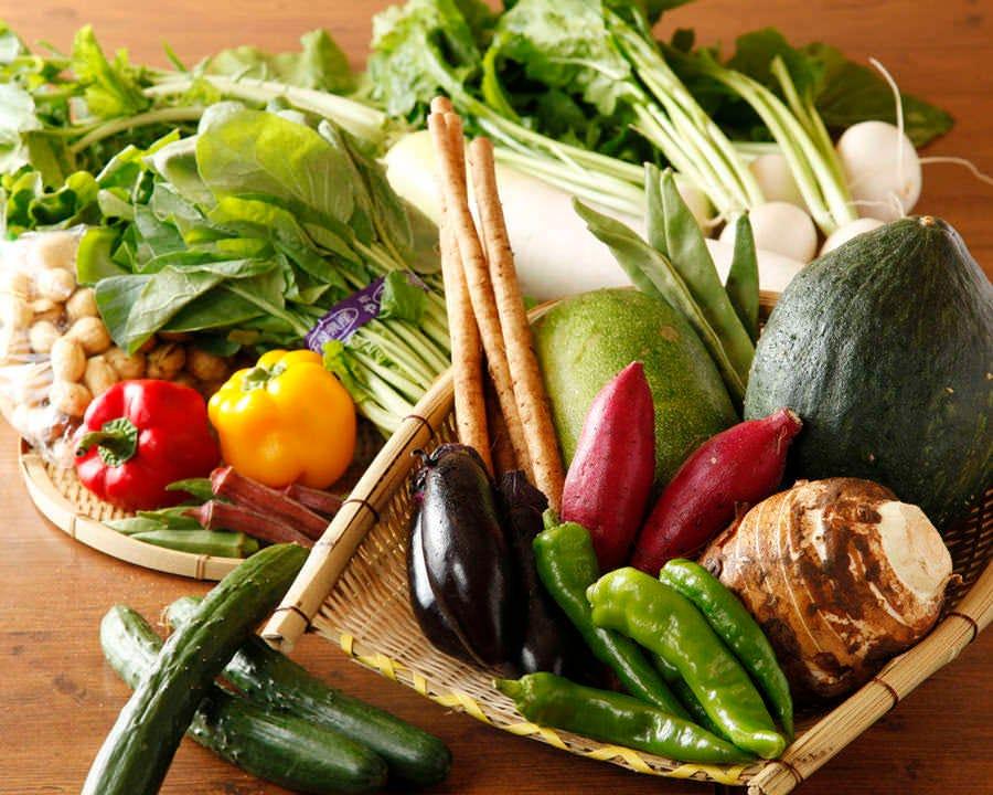 新鮮朝採り野菜