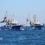 漁港直送!新鮮な海鮮食材の数々!【愛媛、高知、徳島、山口、和歌山ほか】