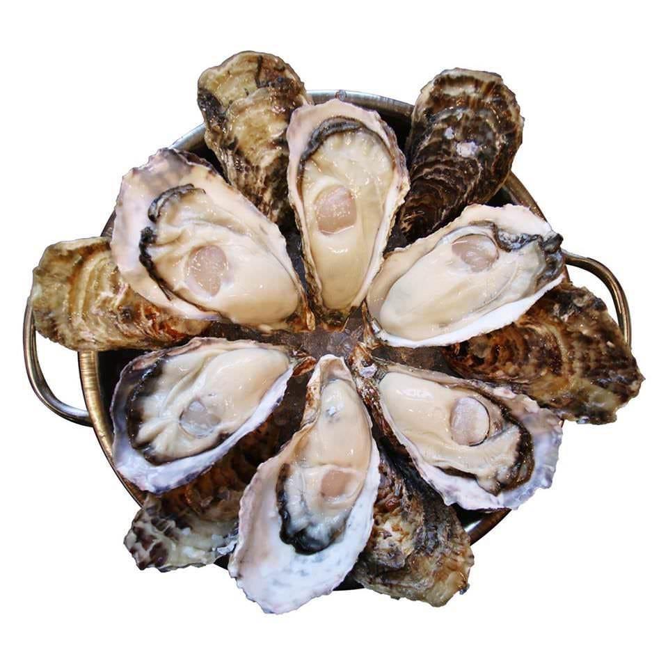 ★月・水・金曜限定!生牡蠣の原価売り190円★!クーポンあり♪