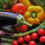 バランス良く!彩り鮮やかな旬野菜、栄養満点お野菜!【国産】