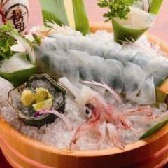 泳ぎイカとカツオの藁焼き 寅八商店 三宮店