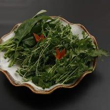 滋養野菜盛り合わせ
