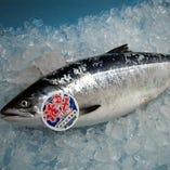 幻の鮭 ときしらず【北海道】