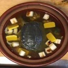 素材からこだわった日本料理をご堪能