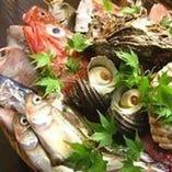 旬な魚を毎日仕入れ