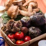 季節の食材