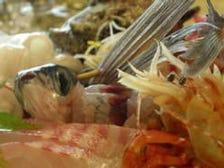 港直送の新鮮な鮮魚をお楽しみ下さい