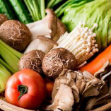 旬の季節野菜を使用【茨城県】