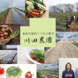 川田農園のお野菜【栃木県】