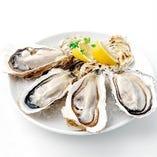 数量限定!広島×北海道 大粒真牡蠣プレート